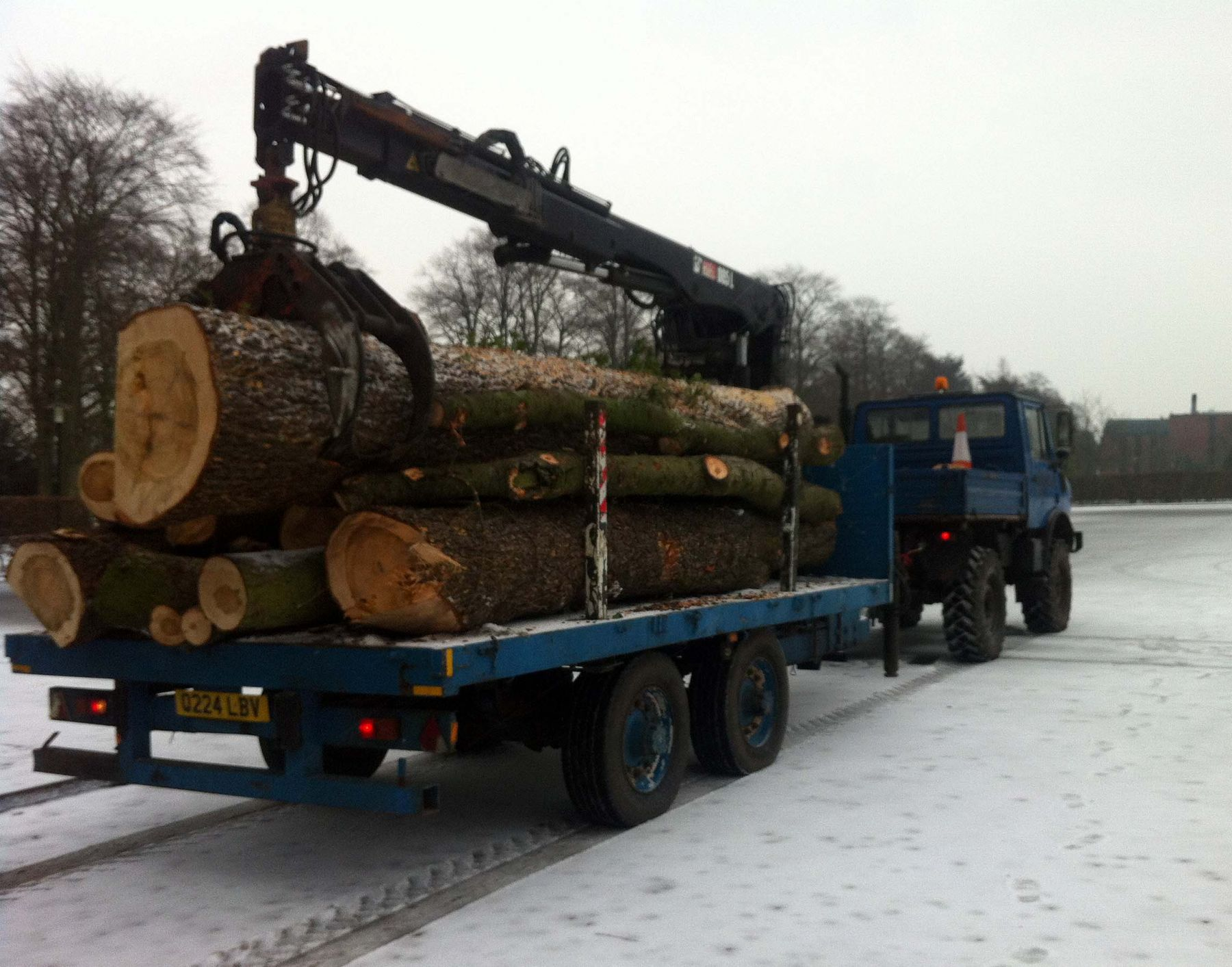 Tree Work with Crane & Trailer Mog