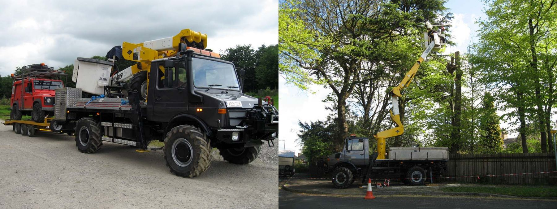 Tree Surgeon Rising High with Access Platform