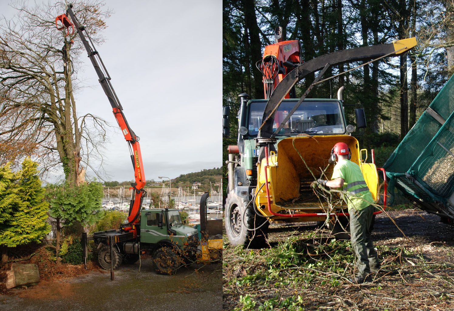 Lifting, Chipping, Towing...there's Nothing a Mog